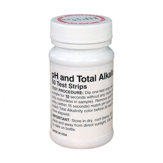 Image for Dual Test Strip - Alkalinity & pH   0 - 360 ppm Pack of 50