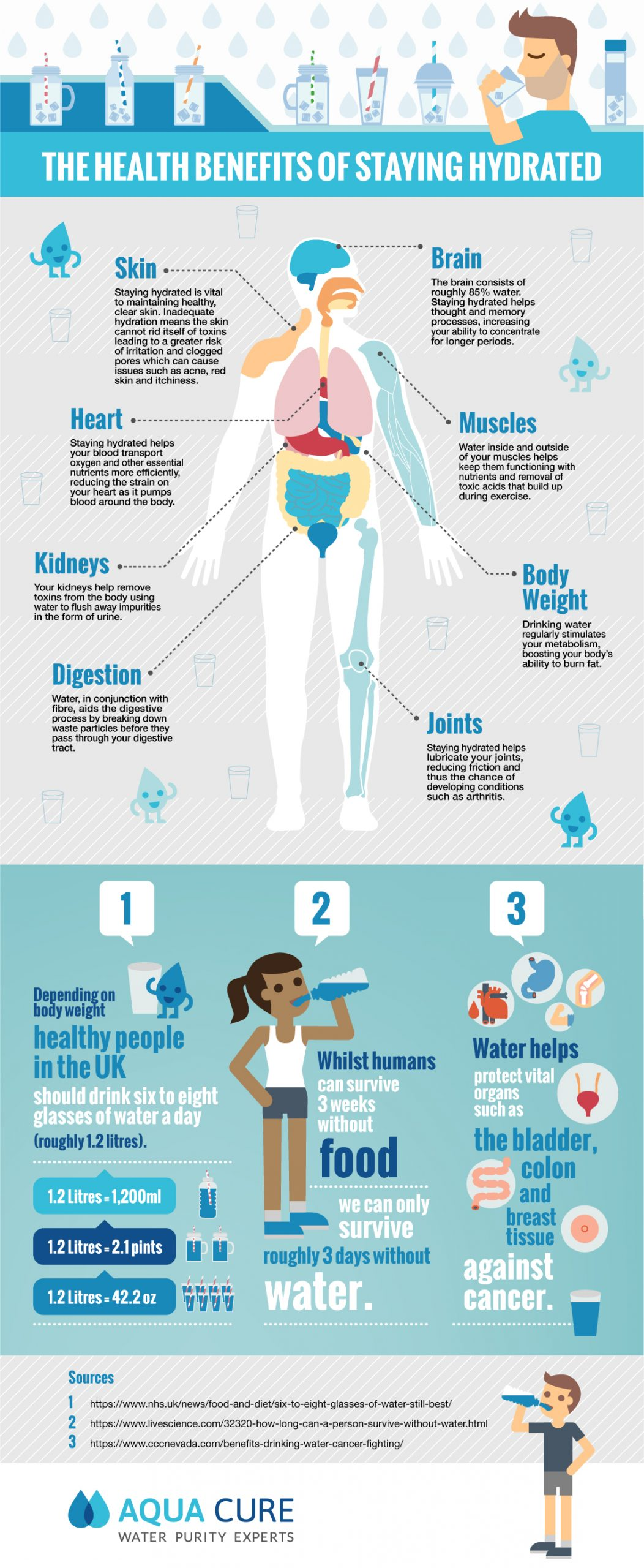 The Health Benefits of Staying Hydrated Infographic