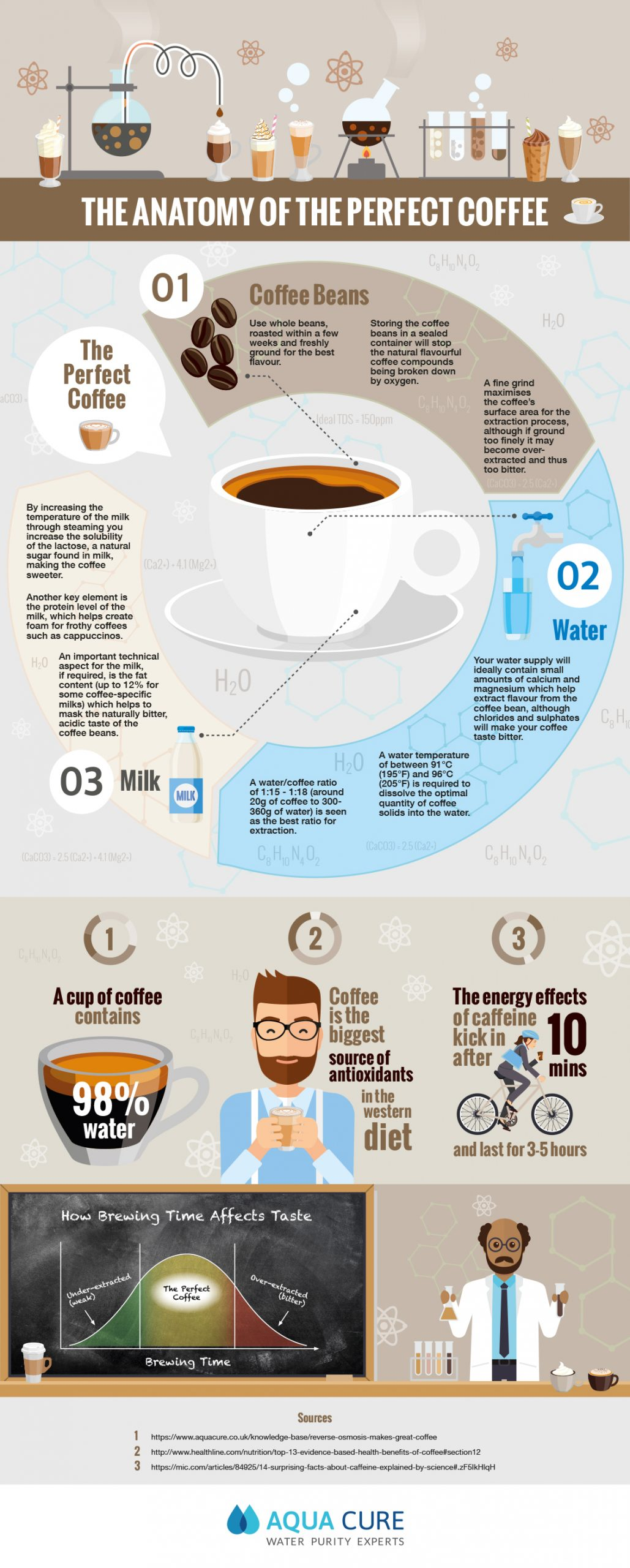 Infographic The Anatomy of The Perfect Coffee